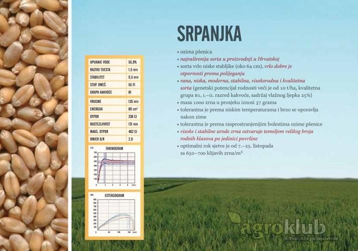 Sjeme pšenice ozime Srpanjka
