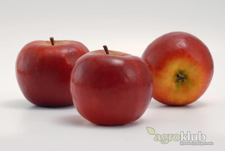 Red Topaz sorta jabuke