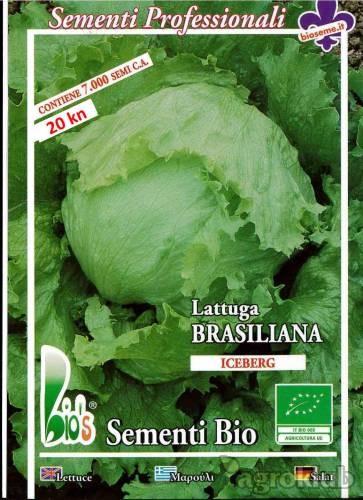 Salata - eko sjeme
