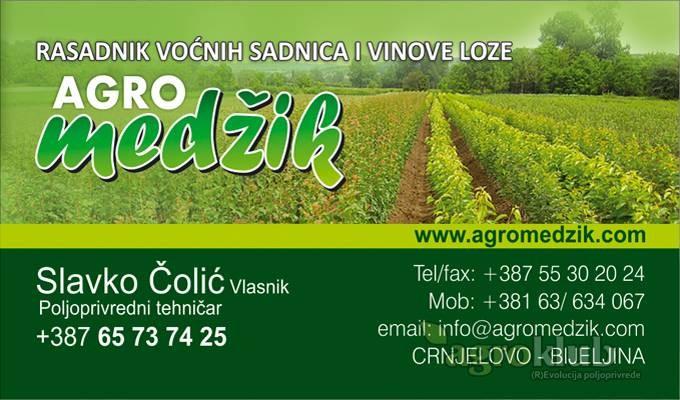 "KVALITETNE VOĆNE I LOZNE SADNICE, RASADNIK ,,AGRO MEDŽIK"""