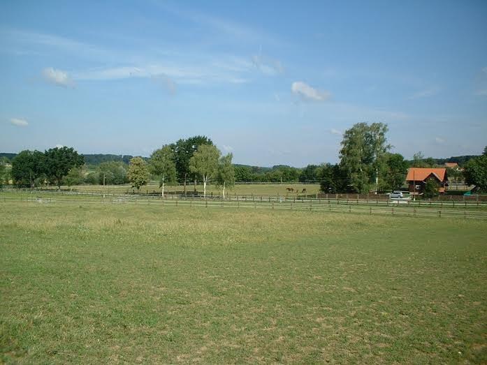 Farma Konja 8 Ha građevinskog zemljišta