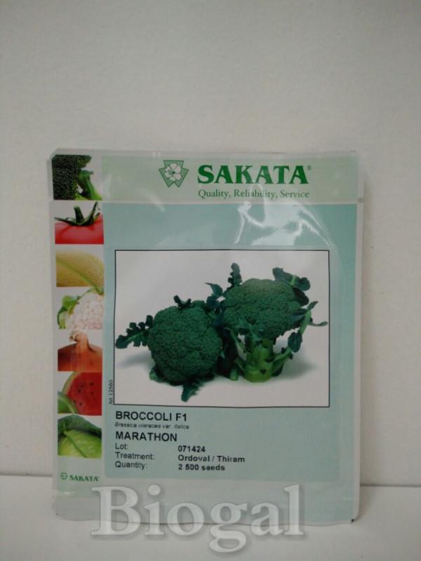 Brokula MARATHON F1