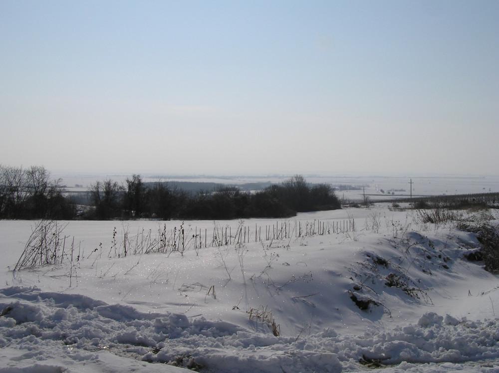 Zemljište Baranja, Kamenac, 22 hektara