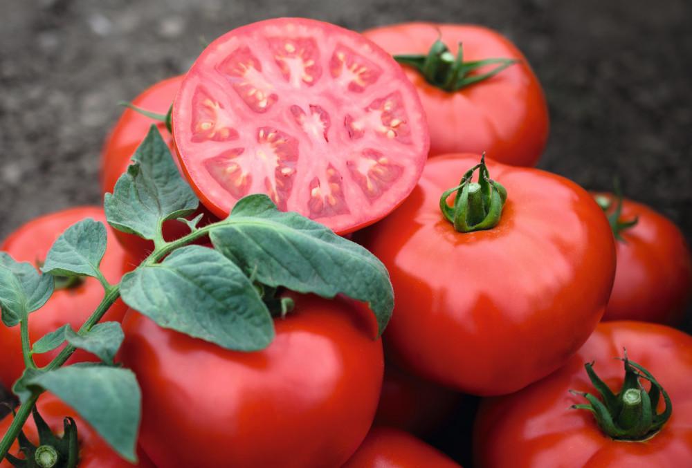 Sjeme rajčice Tomsk F1