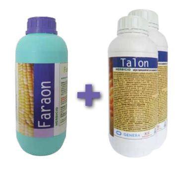 Faraon + Talon Pack