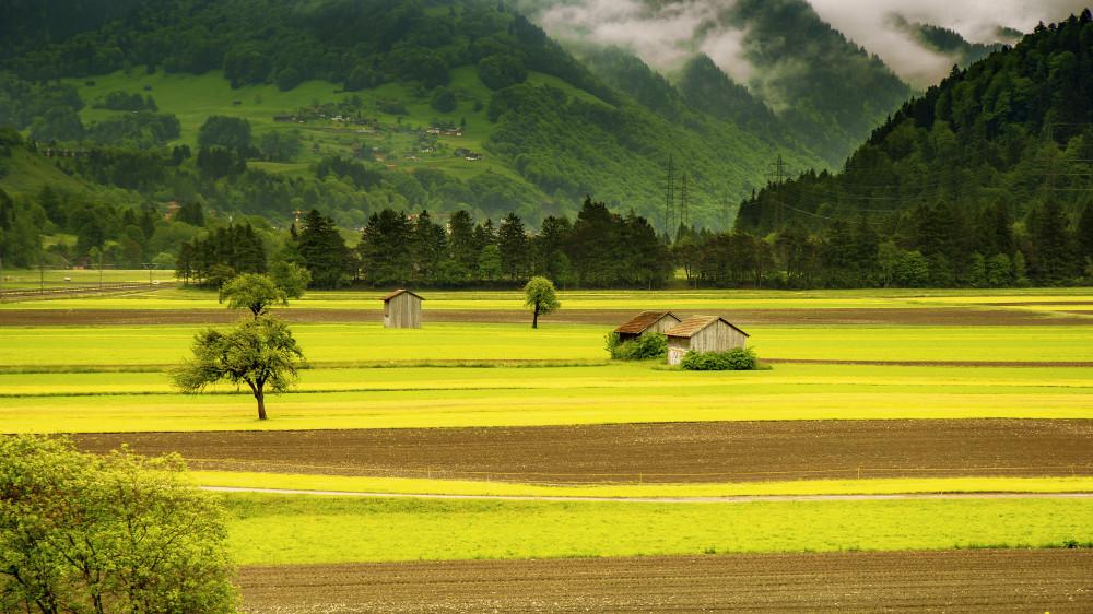 Priprema projekata Programa ruralnog razvoja