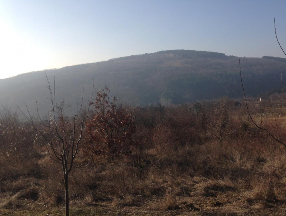 Zemljište za organsku proizvodnju, Fruška gora