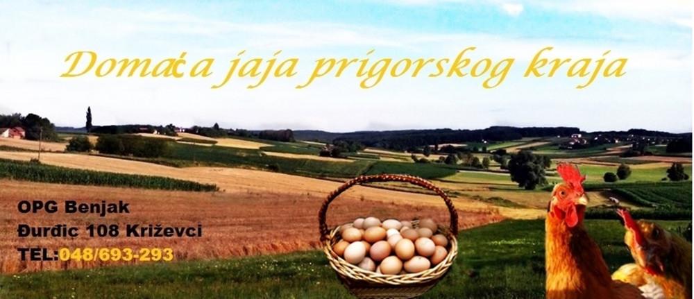 domaća jaja prigorskog kraja