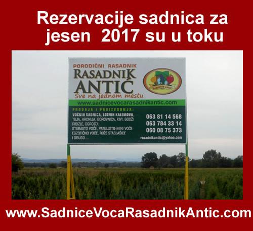 Rezervacija sadnica voća i vinove loze za jesen 2017