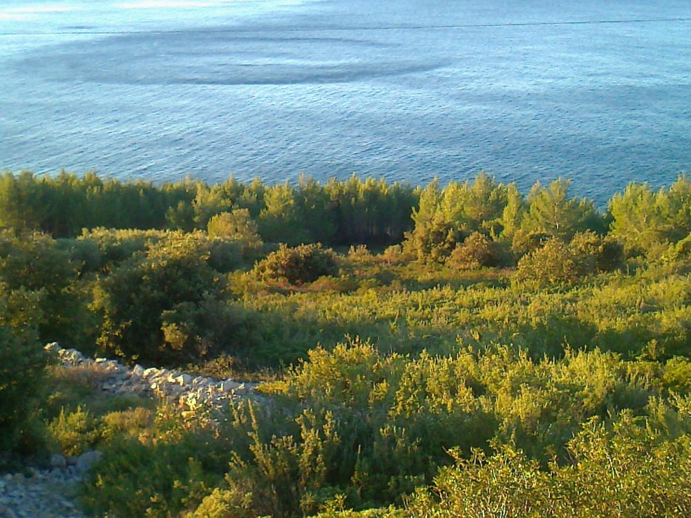 Otok Hvar