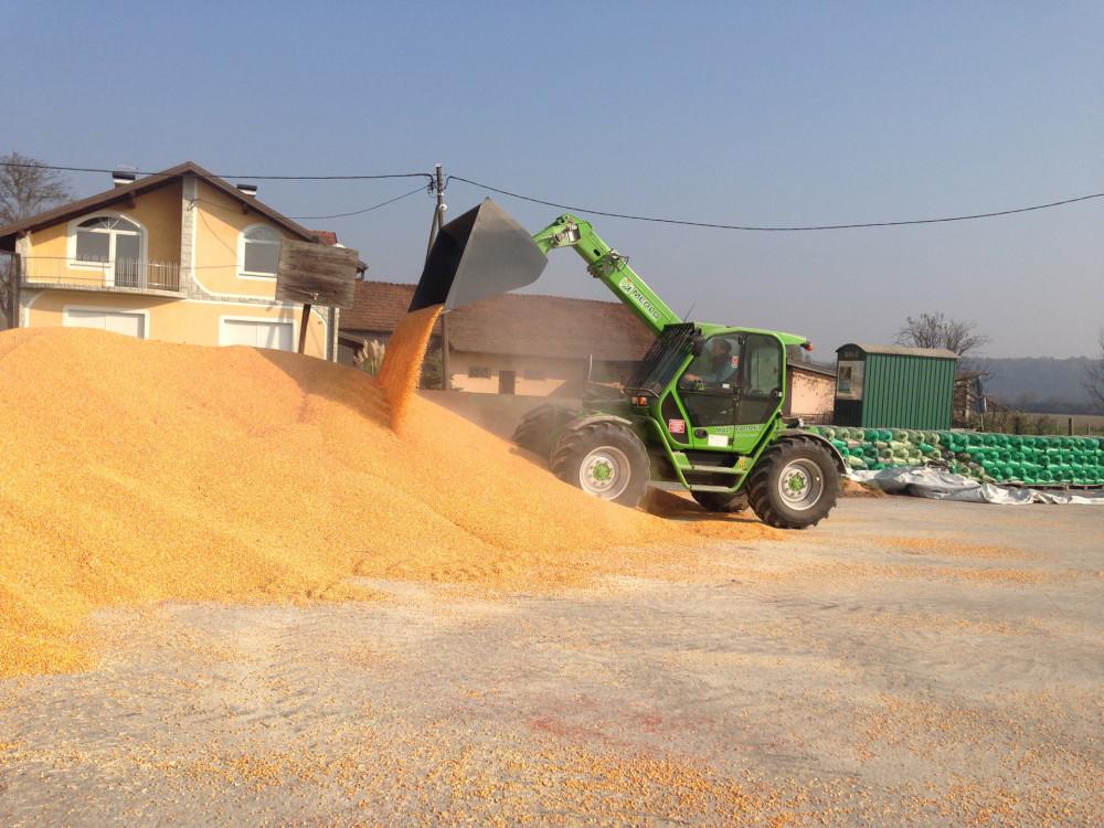 Otkup merkantilne soje i kukuruza, plaćanje isti dan!