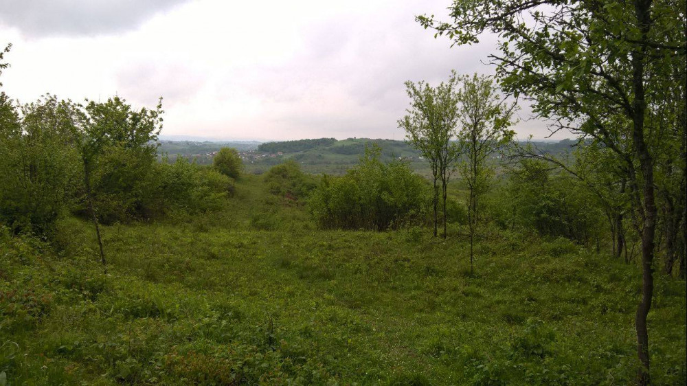 Poljoprivredno zemljiste Kordunski Ljeskovac!