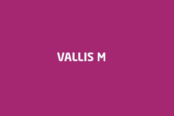 Vallis M