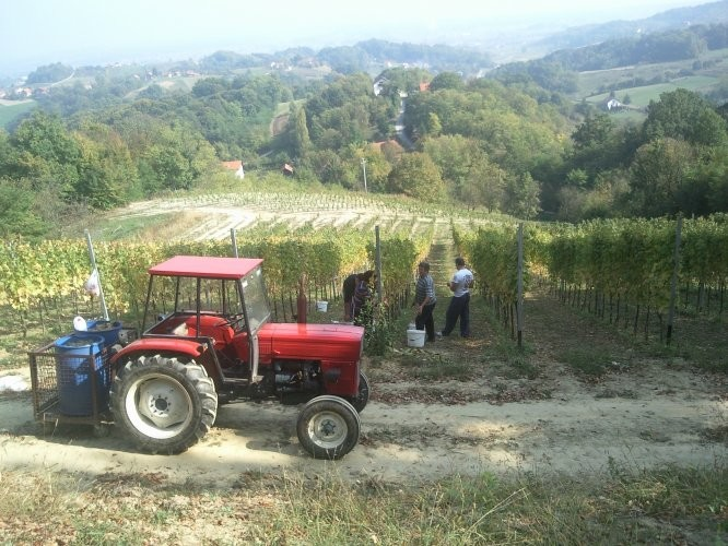 Traktor univerzal 445