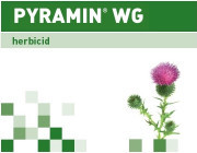 PYRAMIN® WG