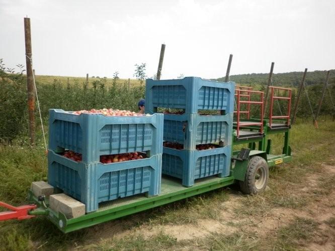 Gajbe za voće i povrće (BOX PALETE)
