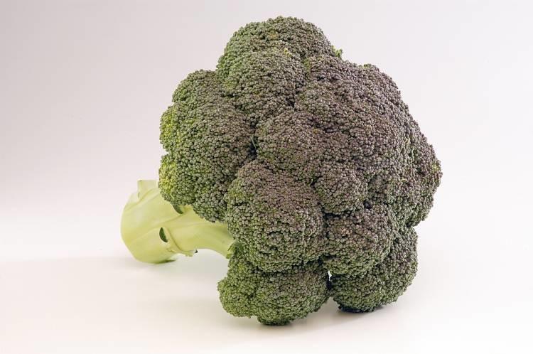 Monaco - brokula