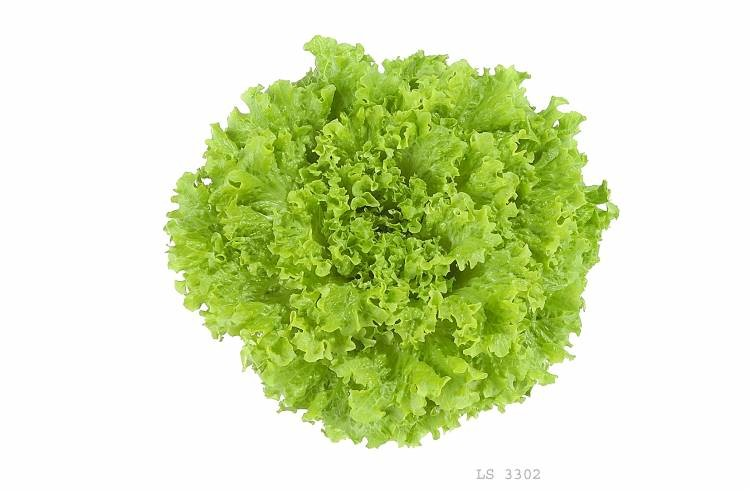 Cetero - salata