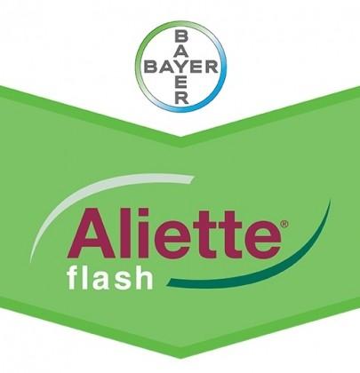 Aliette Flash