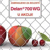 Delan® 700 WG