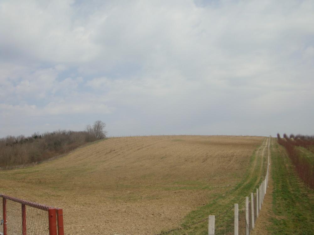 Vočnjak i pripremljeno zemljište