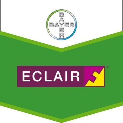 Eclair 49 WG