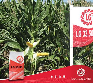 Kukuruz LG 33.50