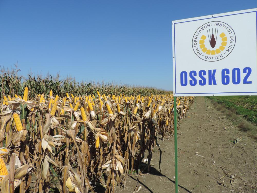 FAO 600 OSSK602