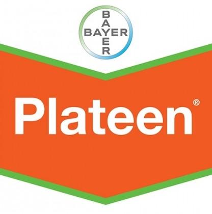 Plateen WG 41,5