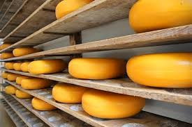 Zaštita i njega sira - premaz za sir