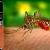 Učinkovito se riješite  stršljenova, osa, komaraca, mravi i drugih nametljivaca!