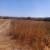 Poljoprivredno  zemljište Sv.Filip i Jakov