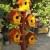 Izrada Drvenih Suvenira za Dvorišta,Bašte , Domaćinstva po želji kupca