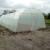 Plastenik 10x5x2,5m