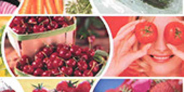 Signum® - Fungicidi - Poljoprivredni oglasnik | Agroklub com