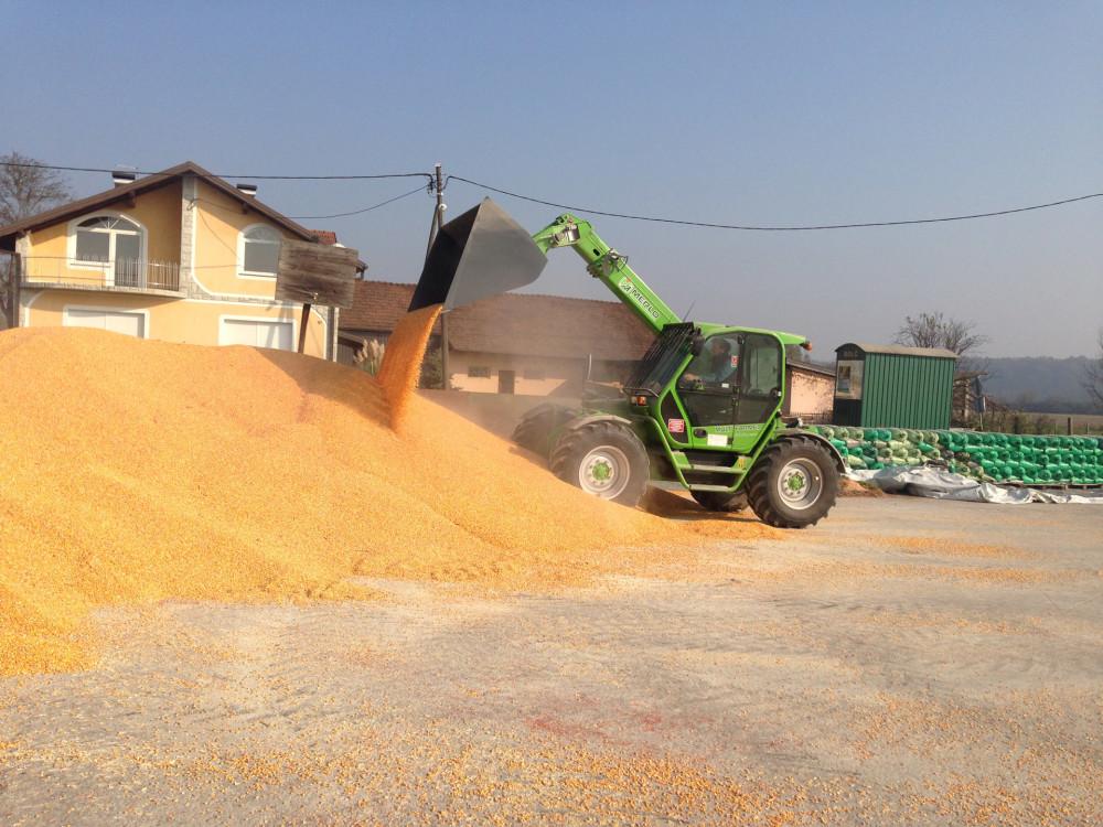 Otkup merkantilne soje i kukuruza, plaćanje isti dan