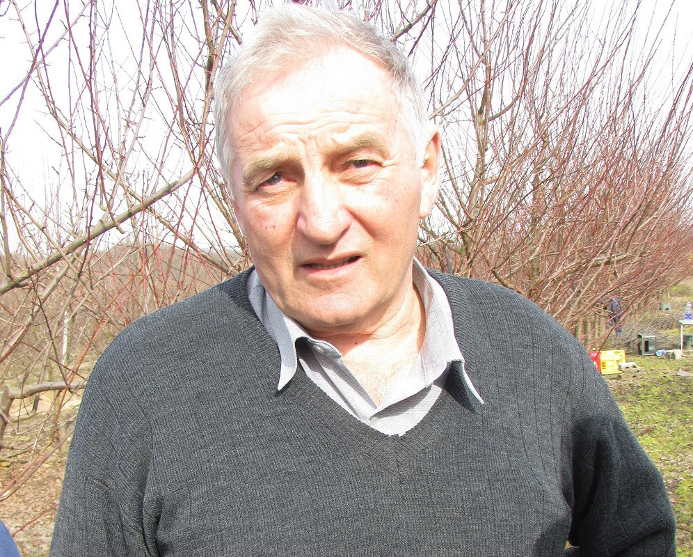Dragoja Dojčinović (49844)