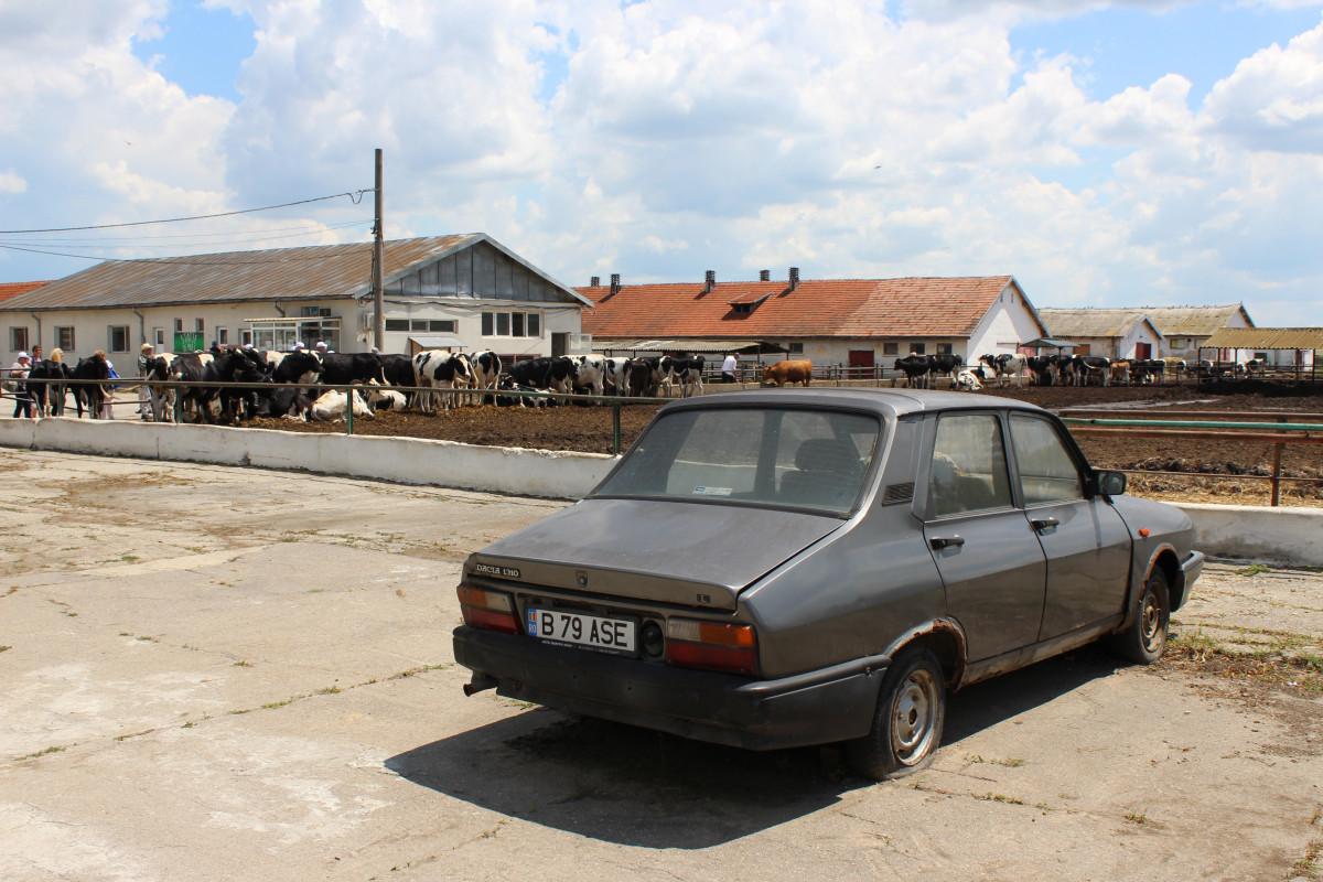 Dacia, simbol rumunske  auto industrije (55824)
