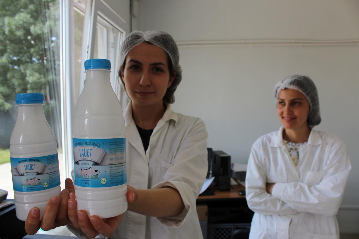 Domaći jogurt se može kupiti na farmi (55830)