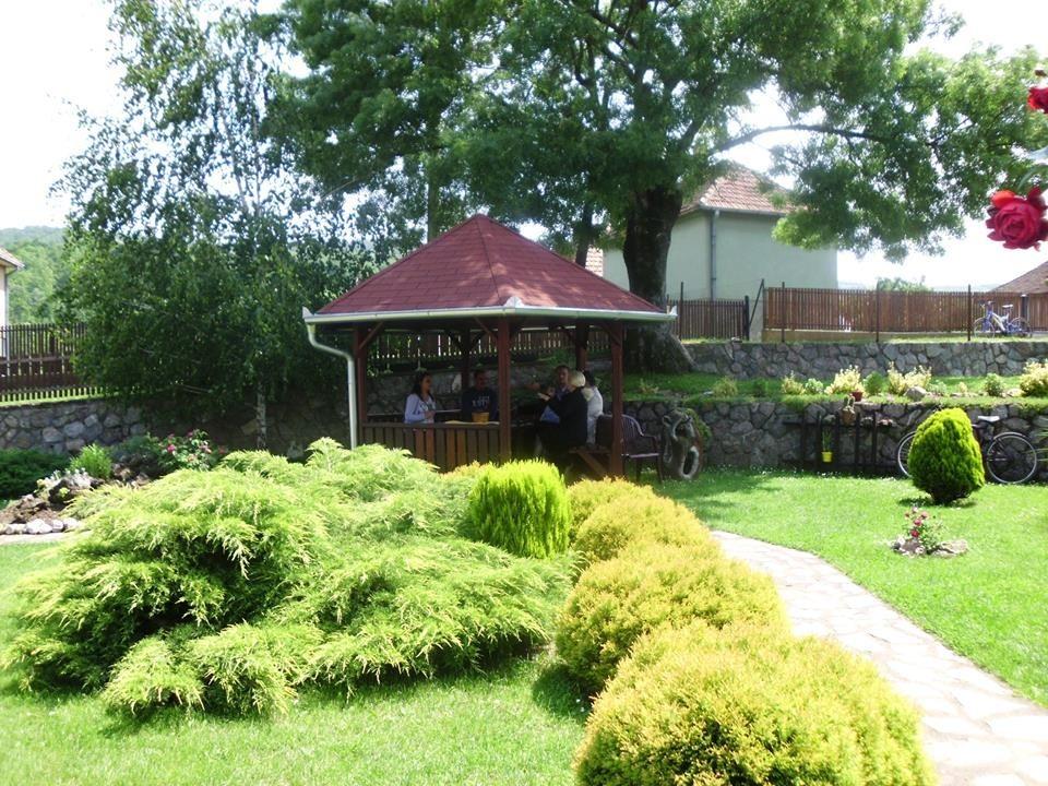 Selo najlepših dvorišta (25748) - Ukrasno i lekovito bilje - AgroKlub.rs