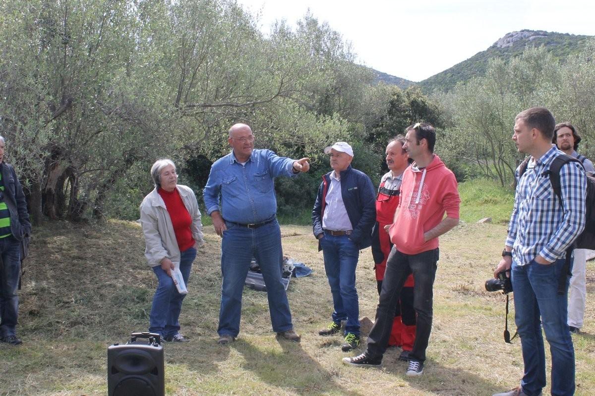 Dani masline - stručni izlet na Ugljan (36113)