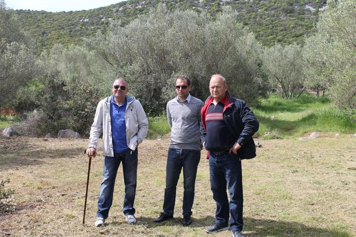 Dani masline - stručni izlet na Ugljan (36143)