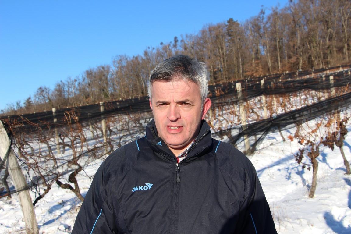 Mladen Pavić, predsjednik Uprave Kutjeva d.d. (46921)