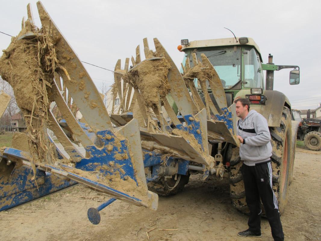 Tov teladi – isplativa grana poljoprivrede (46349)