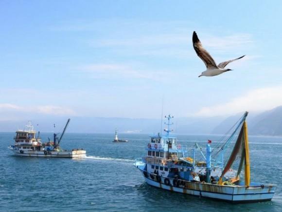 Image result for jadran ribari