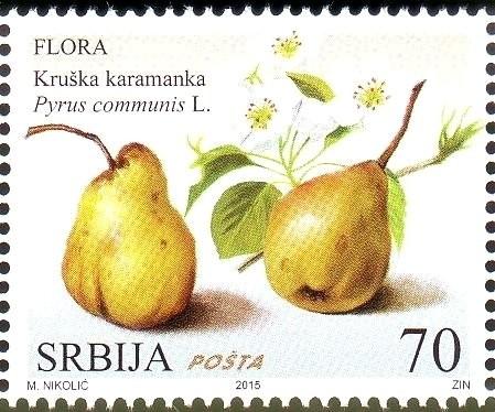 Karamanka