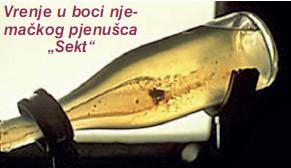 Napravite vlastito pjenušavo vino Pjenusac2