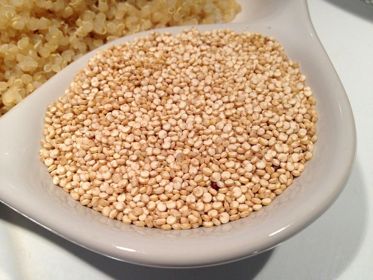Kvinoja seme