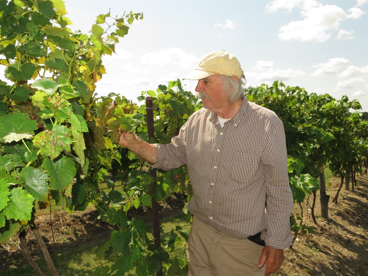 Nakon uspjeha u svemirskom programu, Hrvat oduševio Amerikance i s vinima (60937)