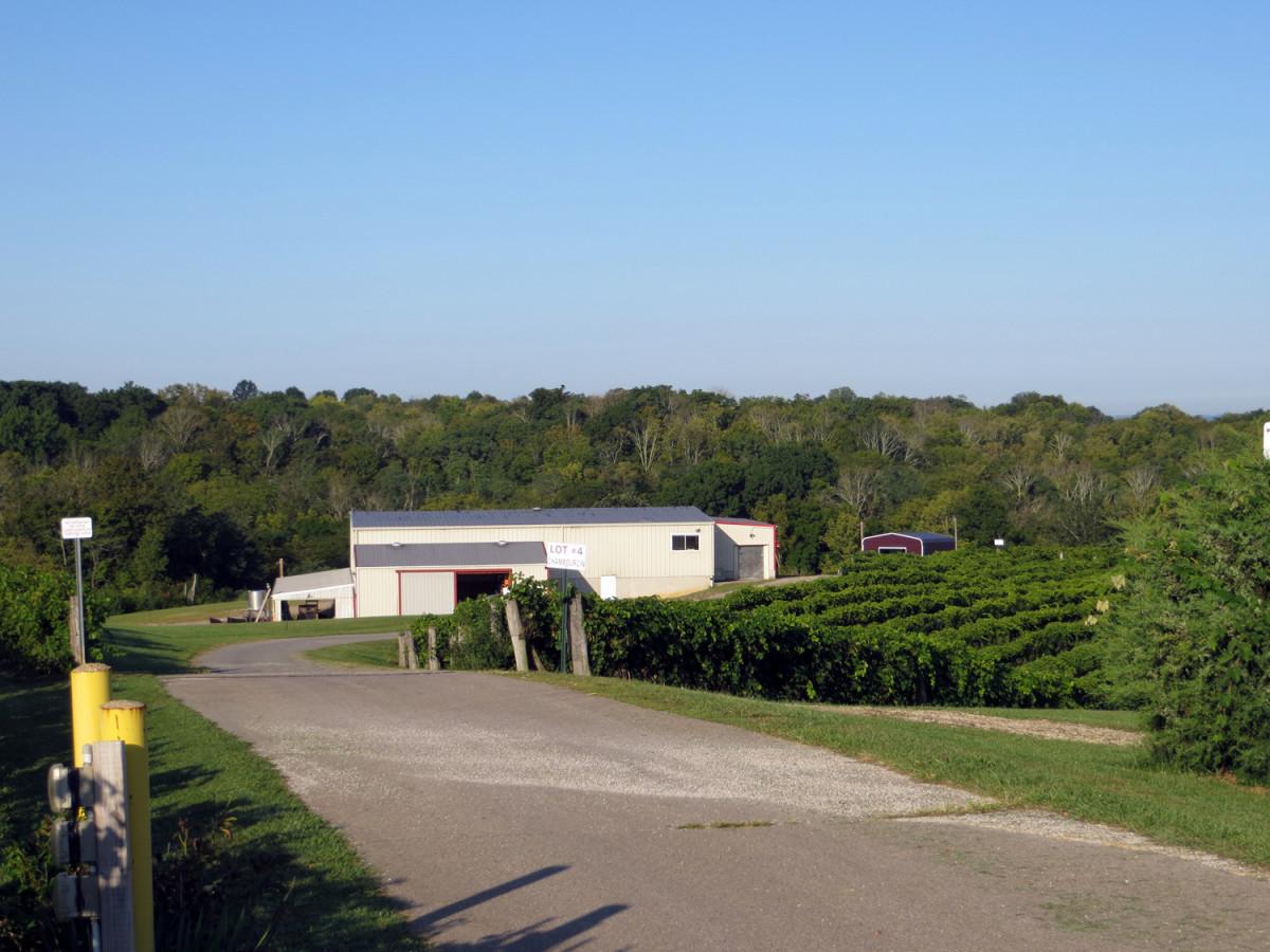 Nakon uspjeha u svemirskom programu, Hrvat oduševio Amerikance i s vinima (60932)